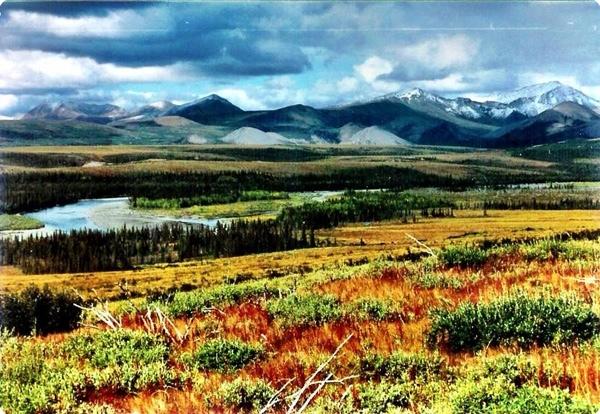 Live a year in Alaska!
